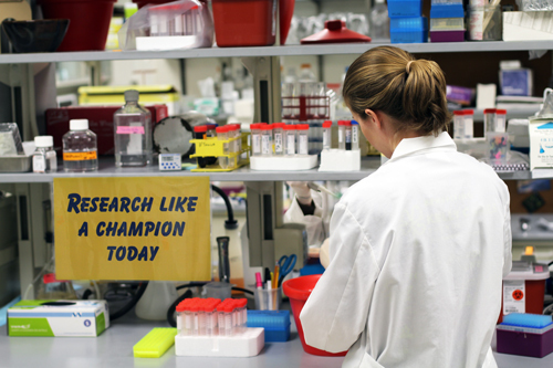 research_like_a_champion_2
