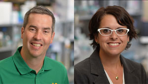 Biological Sciences faculty win awards for teaching and advising