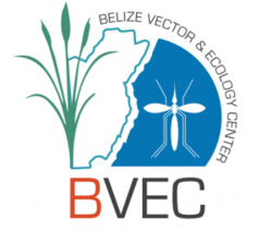 Belize Vector And Ecology Center Bvec Department Of Biological