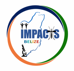 Impacts Belize